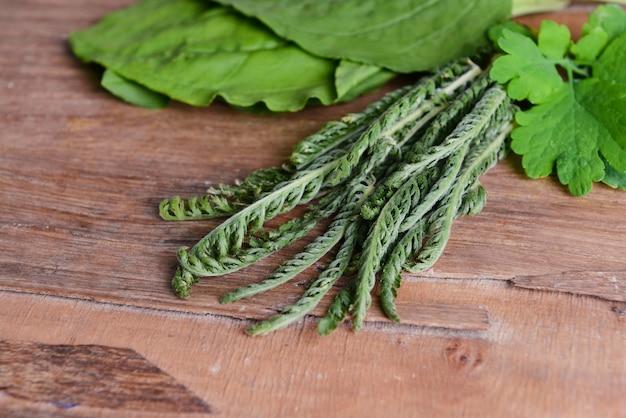 Herbes Médicinales Sur Table Close-up Photo Premium