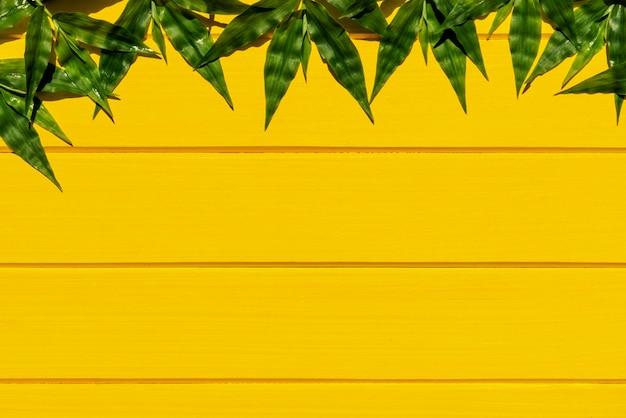 Herbes vertes tropicales sur la vue de dessus du fond bois jaune.