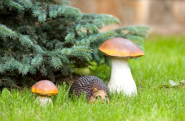Hérisson décoratif et champignons