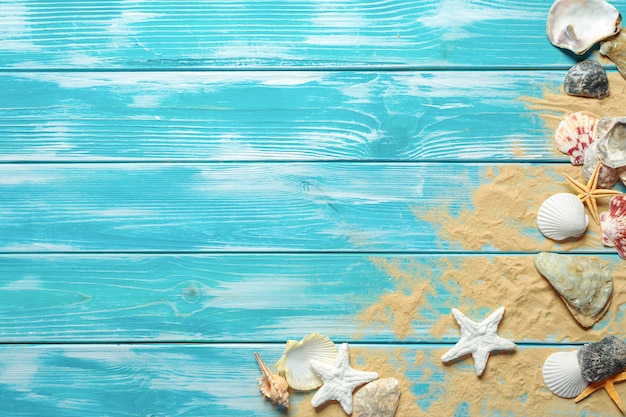 Heure d'été avec des coquillages