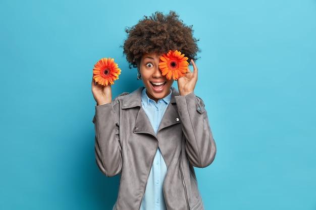 Heureuse jeune femme aux cheveux bouclés couvre les yeux avec des sourires de gerberas orange joyeusement vêtus d'une veste grise a une humeur ludique isolée sur un mur bleu