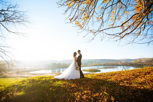 Heureuse mariée et belle brune belle mariée dans une robe blanche, étreinte sous l'arc