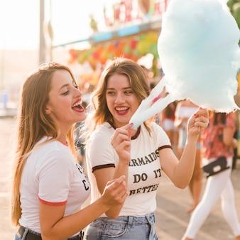 Heureux amis dans le parc d'attractions