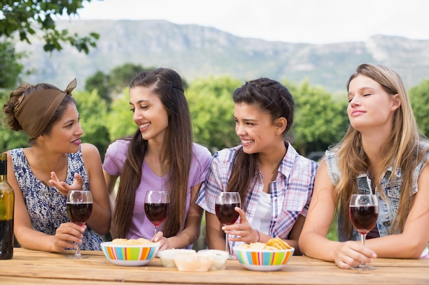Heureux amis dans le parc ayant du vin