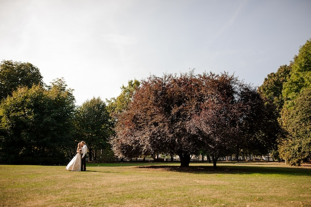 Heureux couple marié debout sur un champ d'herbe verte avec un grand et bel arbre