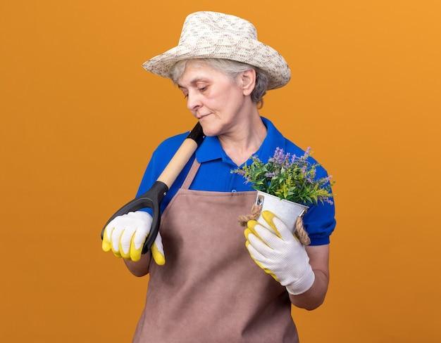 Heureux jardinier femme âgée portant un chapeau et des gants de jardinage tenant un pot de fleurs et une pelle sur l'épaule