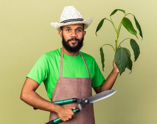 Heureux jeune jardinier afro-américain portant un chapeau de jardinage tenant une plante avec des tondeuses isolées sur un mur vert olive