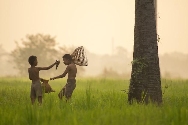 Heureux petit ami asiatique sur le champ de riz vert pendant le matin