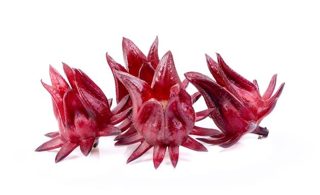 Hibiscus roselle frais sur fond blanc