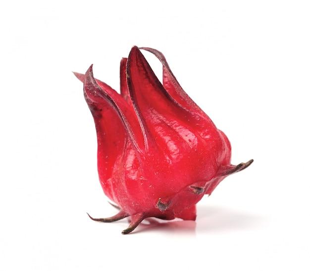 Hibiscus sabdariffa ou fruits de la roselle