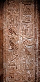 Hiéroglyphes égyptiens antiques avec l'image de différents oiseaux