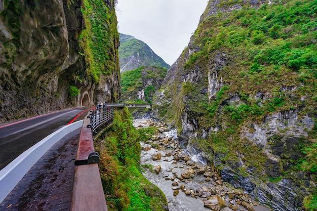 Hirondelle grotte dans le parc national de taroko