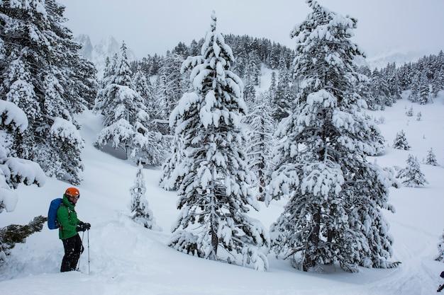 L'hiver dans le parc national d'aiguestortes et sant maurici, pyrénées, espagne