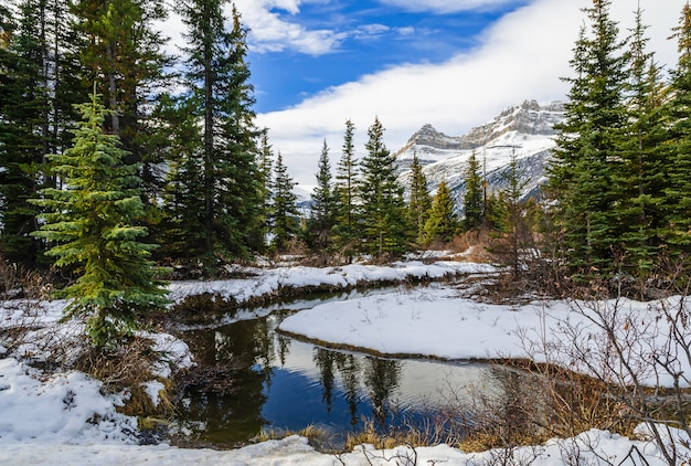 Hiver, vue, de, lac, dans, banff parc national, alberta, canada