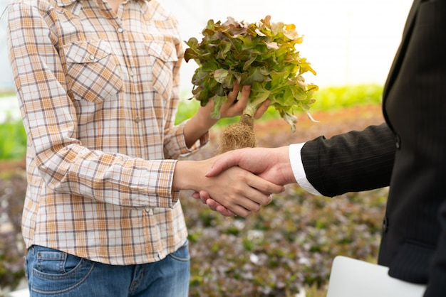 Homme d'affaires et agriculteur serrent la main pour un légume hydroponique de bonne qualité dans une ferme
