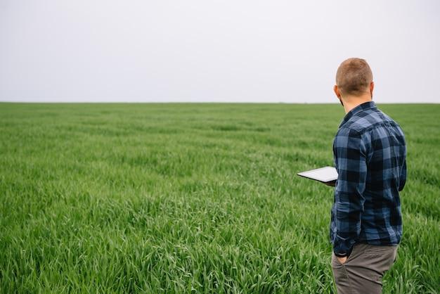 Homme d & # 39; affaires debout dans un champ de blé avec tablette