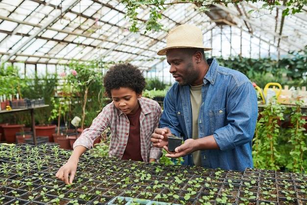 Homme africain enseignant à l'enfant à planter des semis en serre