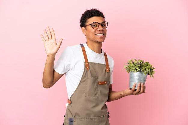 Homme africain de jardinier tenant une plante isolée sur fond rose saluant avec la main avec une expression heureuse