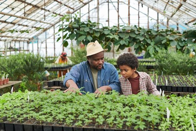 Homme africain montrant les semis de plantes et en parlant à l'enfant pendant qu'ils travaillent en serre
