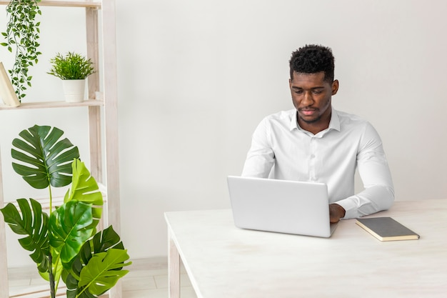 Homme afro-américain travaillant et plante monstera
