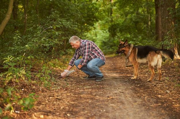 Homme âgé responsable nettoyant après son chien de compagnie lors d'une promenade dans la forêt