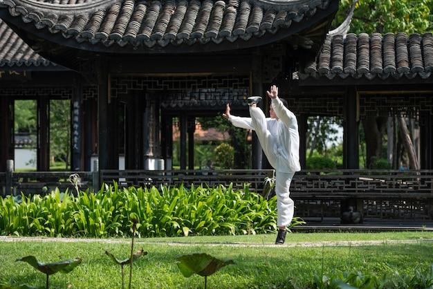 Homme asiatique travaillant avec tai chi le matin au parc, arts martiaux chinois, concept de soins de santé pour la vie.