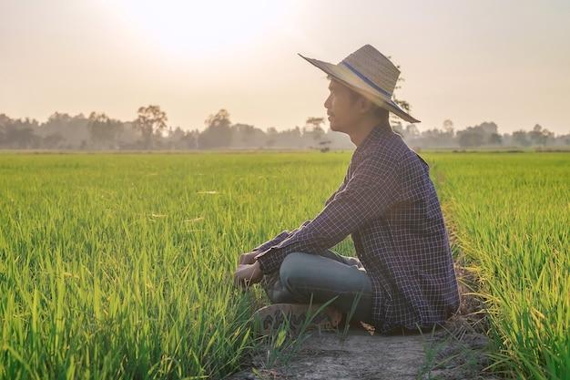 Un homme asiatique vêtu d'une chemise à rayures bleues est assis en regardant joyeusement les produits dans la rizière.