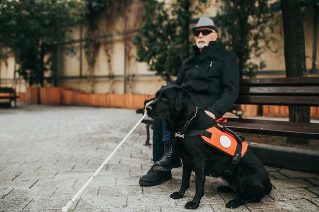 Homme aveugle mature avec son chien-guide assis sur un banc.