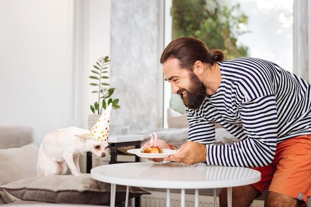 Homme barbu attentionné se sentant tout simplement incroyable tout en apportant une petite assiette avec un gâteau d'anniversaire pour chien