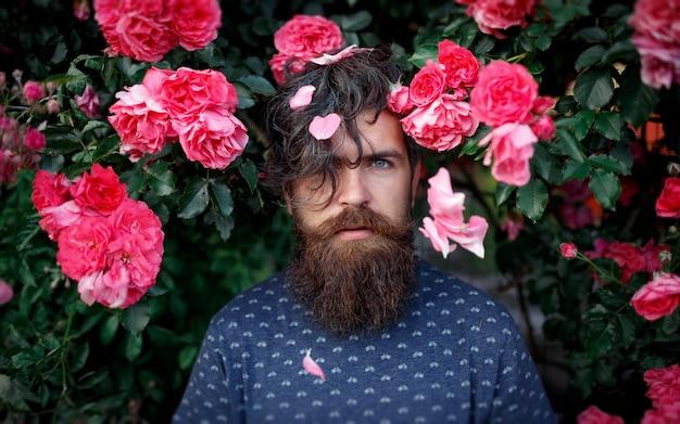 Un homme barbu brutal avec une longue barbe se tient près des buissons d'une rose rouge avec des pétales sur les cheveux longs