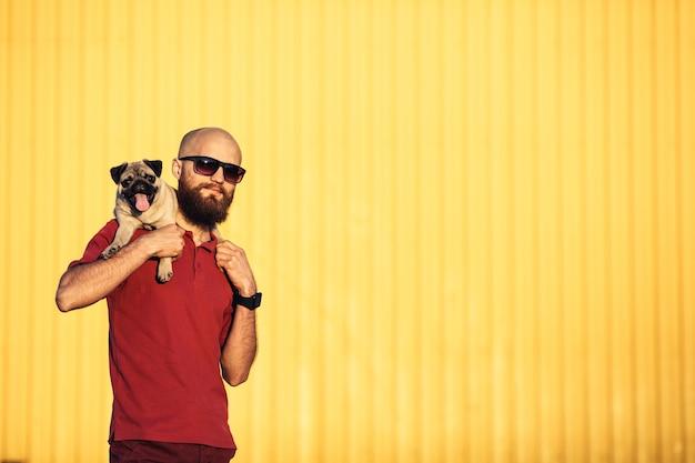 Un homme barbu à lunettes tient un chiot carlin sur ses épaules contre un mur jaune et montrant des langues