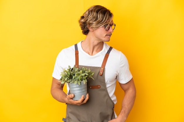 Homme blond jardinier tenant une plante isolée sur fond jaune à la recherche sur le côté