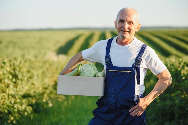 Homme avec boîte en bois de légumes dans le champ