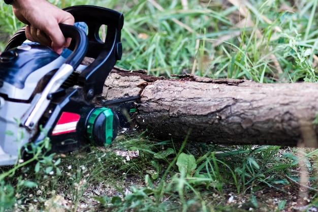 Homme coupant des arbres à l'aide d'une tronçonneuse électrique et d'outils professionnels