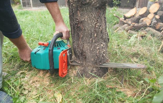 Homme coupe du bois avec une tronçonneuse.