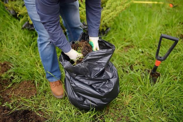L'homme creuse des trous une pelle pour planter des plants de genévrier dans la cour