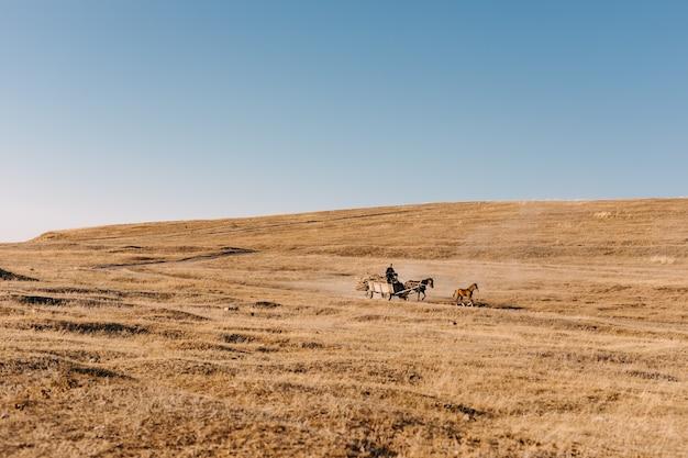 Homme débarrassant une charrette à cheval sur un champ ouvert