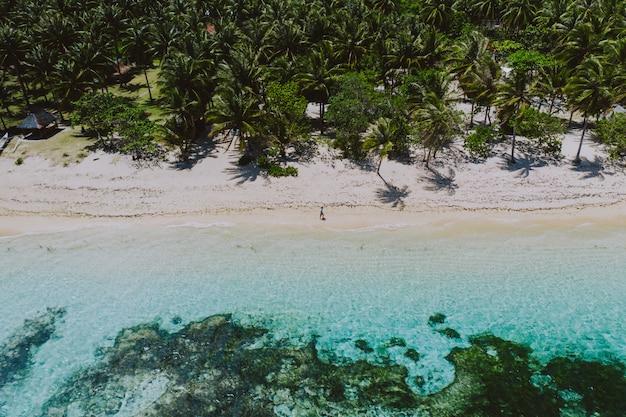 Homme debout sur la plage et profiter de l'endroit tropical avec vue. couleurs de la mer des caraïbes et palmiers. concept sur les voyages et le mode de vie