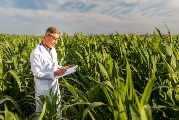 Homme écrivant sur un presse-papiers dans un champ de maïs