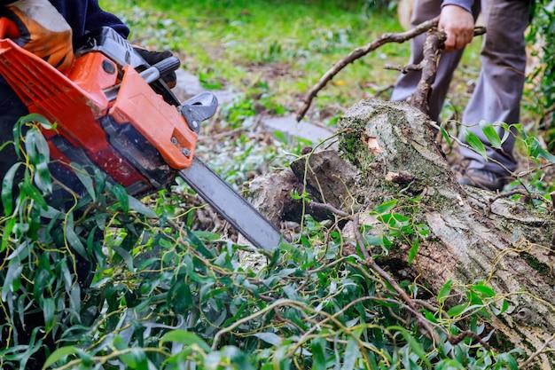 Un homme élaguant des branches d'arbres travaille dans les services publics de la ville après un ouragan, endommageant des arbres après une tempête