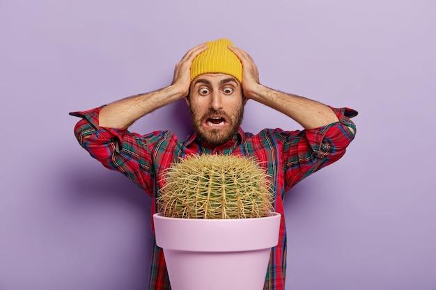 Un homme embarrassé regarde une grosse plante de cactus, garde les deux mains sur la tête, porte un chapeau jaune et une chemise à carreaux