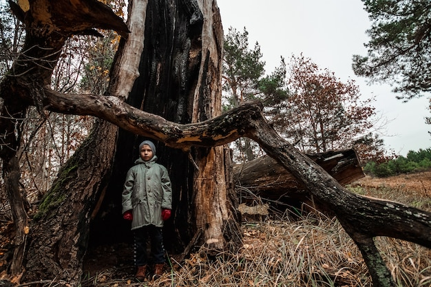 Homme enfant debout à l'intérieur d'un tronc d'arbre
