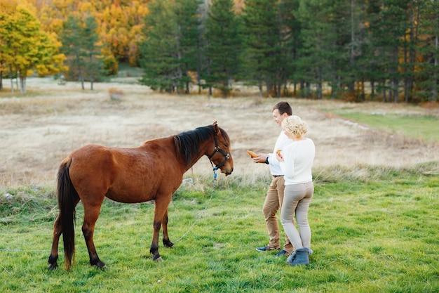 L'homme et la femme nourrissent les carottes au cheval brun dans la forêt d'automne