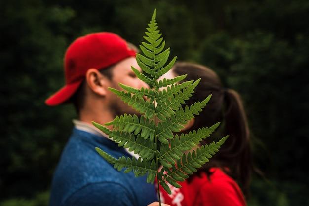Homme et femme s'embrassant parmi les fougères. couple amoureux s'embrasser. fougère verte. garçon et fille dans les bois.