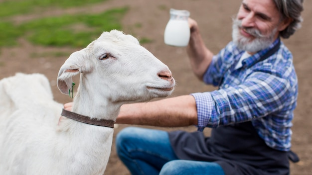 Homme grand angle avec du lait de chèvre