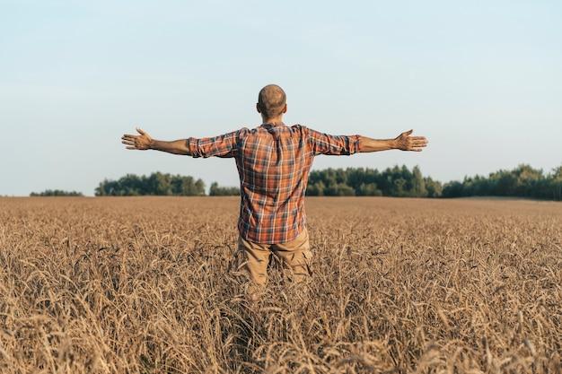 Homme heureux avec les bras tendus dans le contexte d'un champ de blé d'été au coucher du soleil inspiratio...