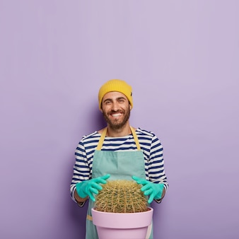 Un homme heureux cultive de très gros cactus à la maison, touche une plante succulente, porte des gants en caoutchouc, uniforme, s'intéressant à la botanique