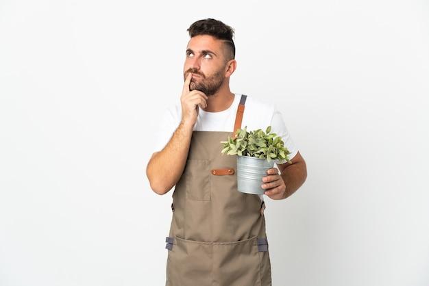 Homme jardinier tenant une plante sur fond blanc isolé ayant des doutes tout en levant