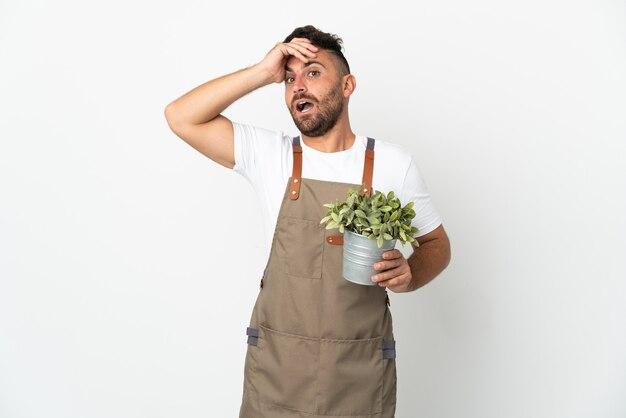 Homme jardinier tenant une plante sur fond blanc isolé faisant un geste de surprise tout en regardant sur le côté