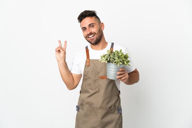 Homme jardinier tenant une plante sur fond blanc isolé souriant et montrant le signe de la victoire